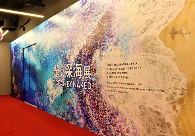 「OCEAN BY NAKED(オーシャンバイネイキッド)光の深海展」