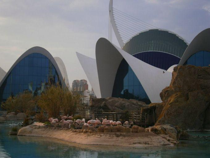 欧州最大級の水族館「オセアノグラフィック」