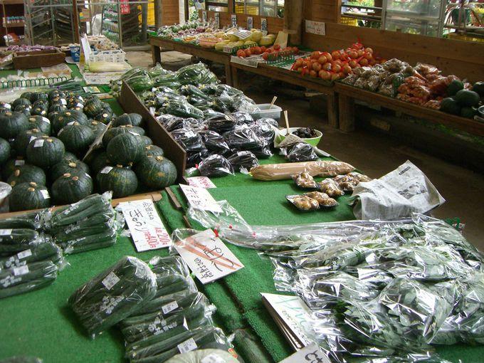 ○○さんの夏野菜をお土産に