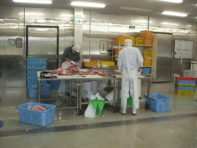 「筑波ハム」の工場見学