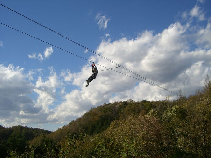 森からサーキットの大空へ!