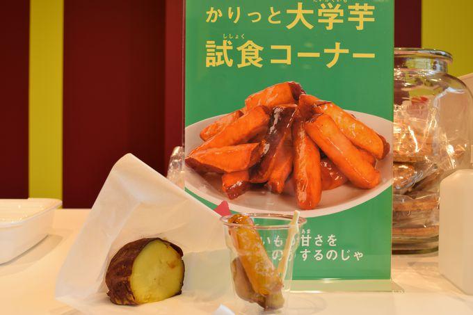 工場見学後のお楽しみ!日本一甘い焼き芋を試食しよう!!