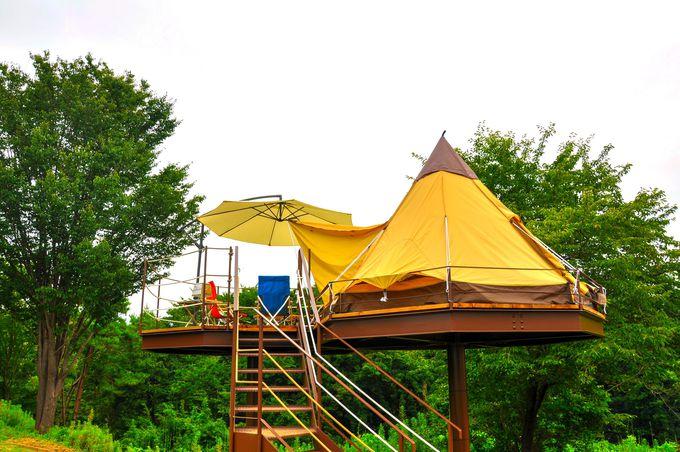 空中グランピング「マッシュルームキャンプ」