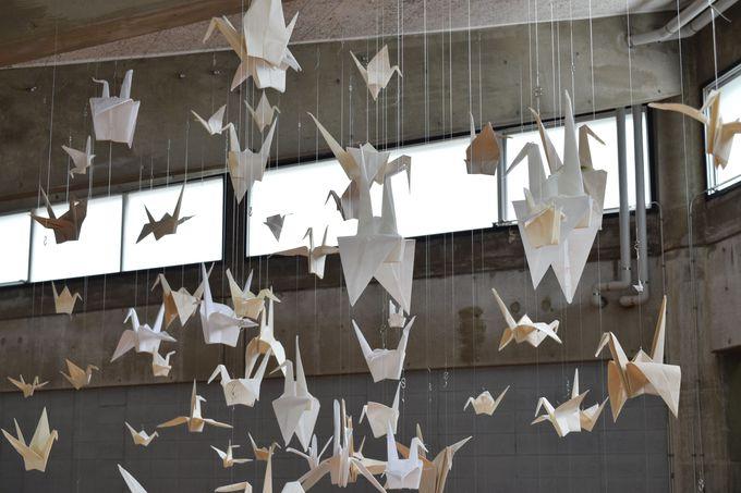 バイオアートの最先端を取り入れた「折り紙ミューテーション」