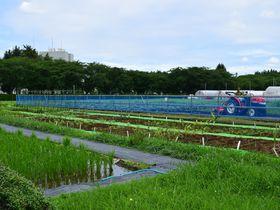 茨城「食と農の科学館」楽しみながら食や農業について学ぼう!