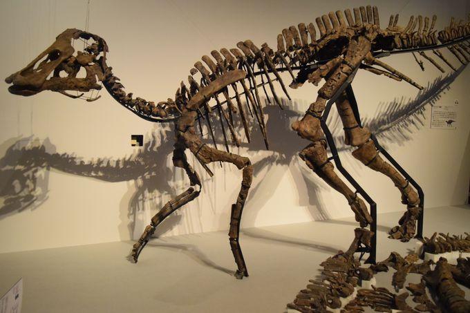 ディノサウロイド(恐竜人間)!?