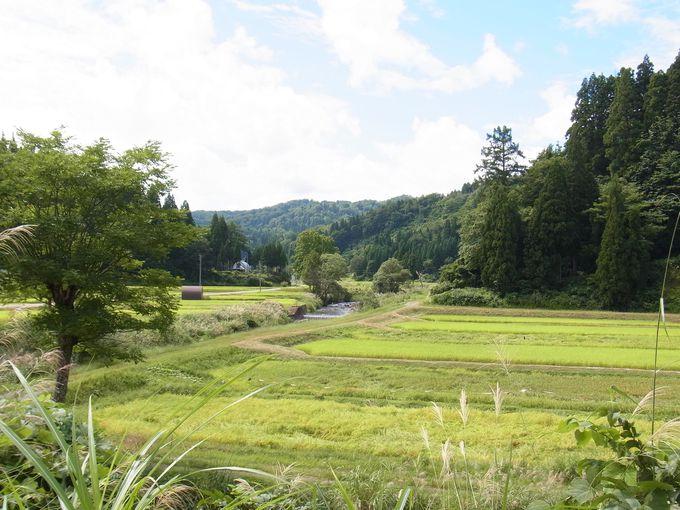 周辺にも心洗われる田園風景がたくさん!