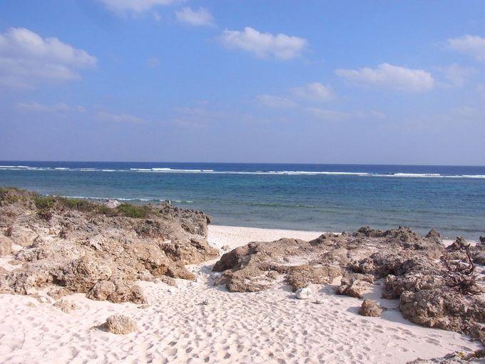 魂が帰る場所であるニライカナイをのぞむ、伊敷浜は海の畑!