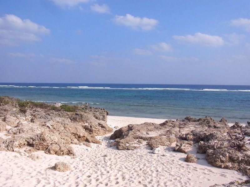 沖縄・久高島で自然に還る!島のガイドとまわる聖域