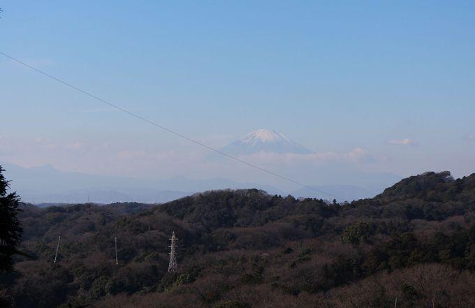 海だけでなく、富士山を眺められる穴場あり