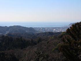 鎌倉の自然を歩いて楽しむ!覚園寺口から瑞泉寺へハイキング
