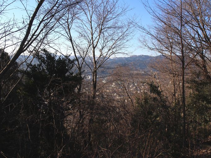 八幡山の山頂から市街をのぞむ
