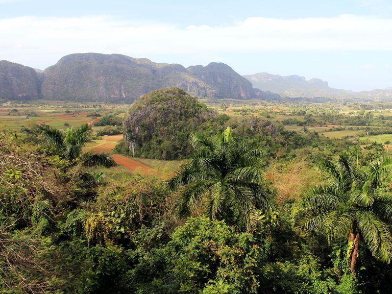キューバの高原!ビニャーレス渓谷で心も体もリフレッシュ