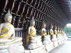 ほっと一息!自然と調和するモダン建築「シーマ・マラカヤ寺院」
