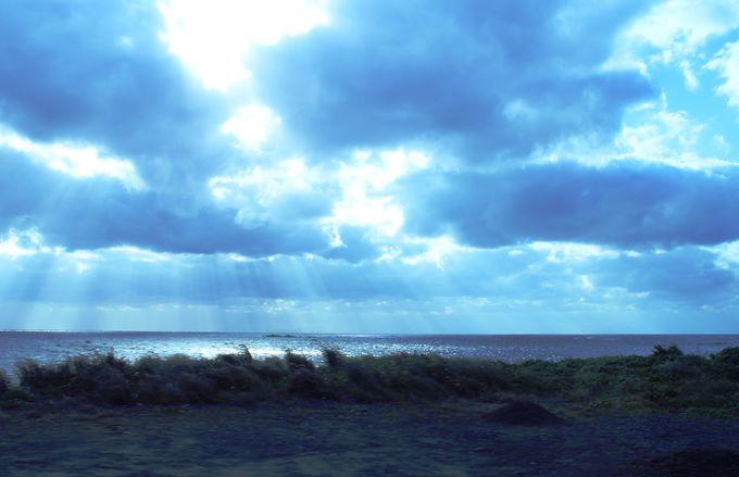 くるくると変わる屋久島の天気は自然の恵み