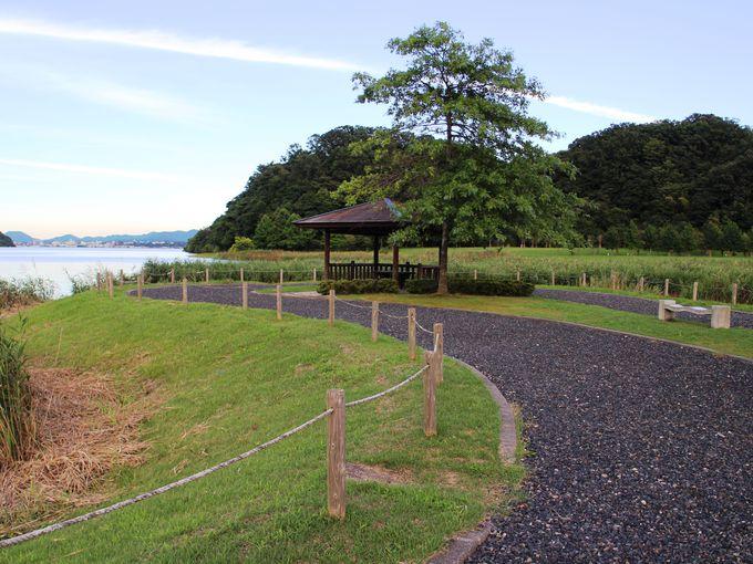 広々とした草地が魅力の休養ゾーン