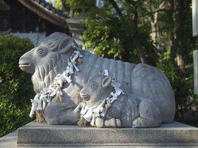親子の狛羊に出会えるのは日本でここだけ!名古屋・羊神社