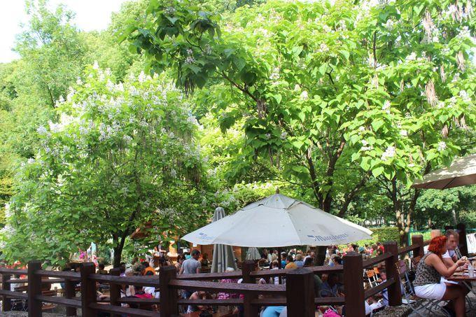 マレッツ修道院の中庭で、森林浴をしながらリフレッシュ!