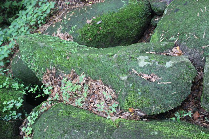 石穴稲荷神社「奥宮」で地球の息吹を感じよう
