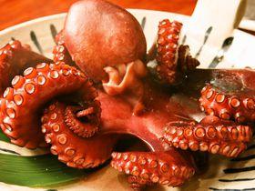 海と美味しいご飯!ゆったり癒しの旅なら愛知・日間賀島