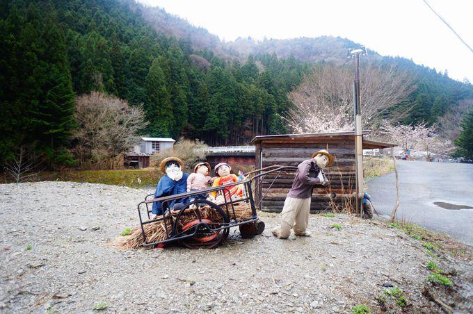 珍名所2「祖谷かかし村」でかかし達に出迎えられて…