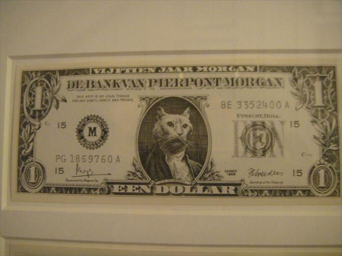 ドル札になってしまった猫