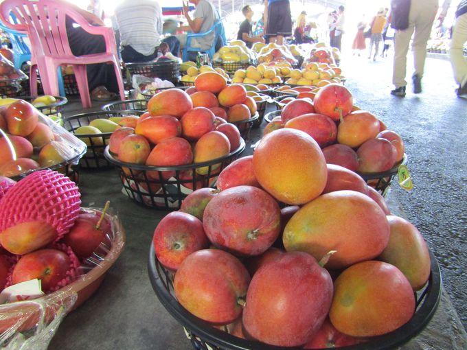 夢にまで見たカゴ盛りのマンゴー!マンゴー!