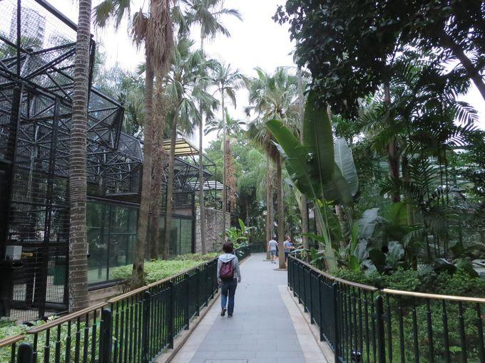 ここまで来たら香港動植物公園で腹ごなし