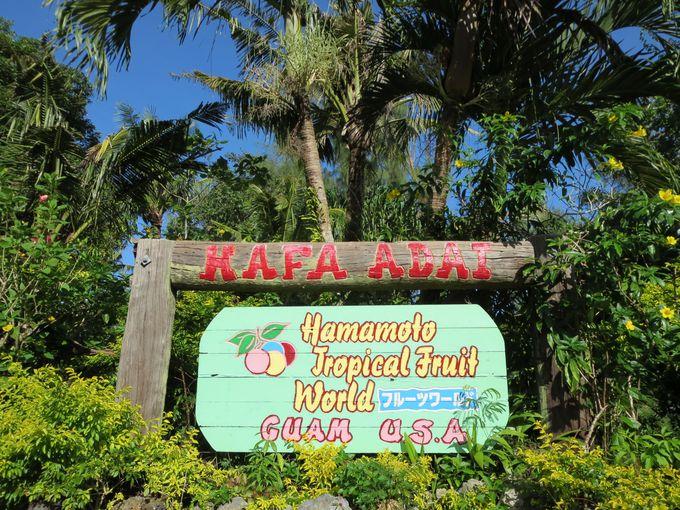 観光農園としての「ハマモト・トロピカルフルーツワールド」