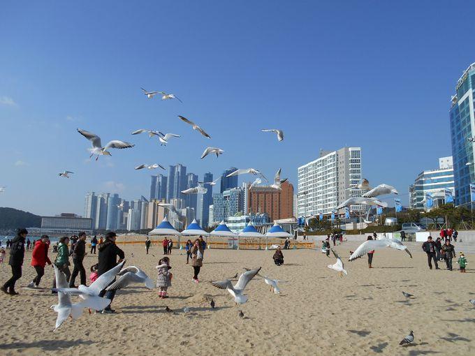 白く長いビーチを歩いて行くと島に上陸します
