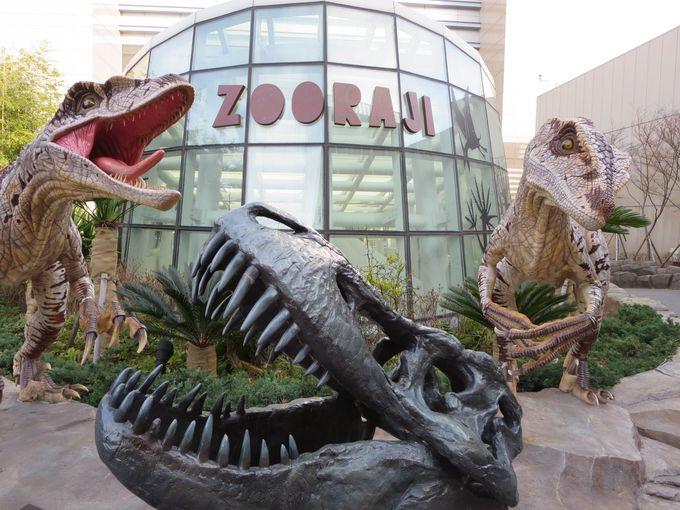 屋上のミニテーマパークにティラノザウルスが出現!