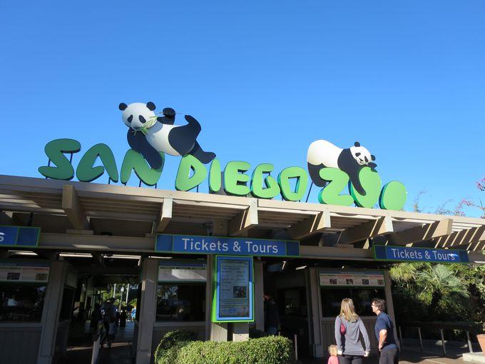 サンディエゴ動物園で1日たっぷりお得に過ごそう