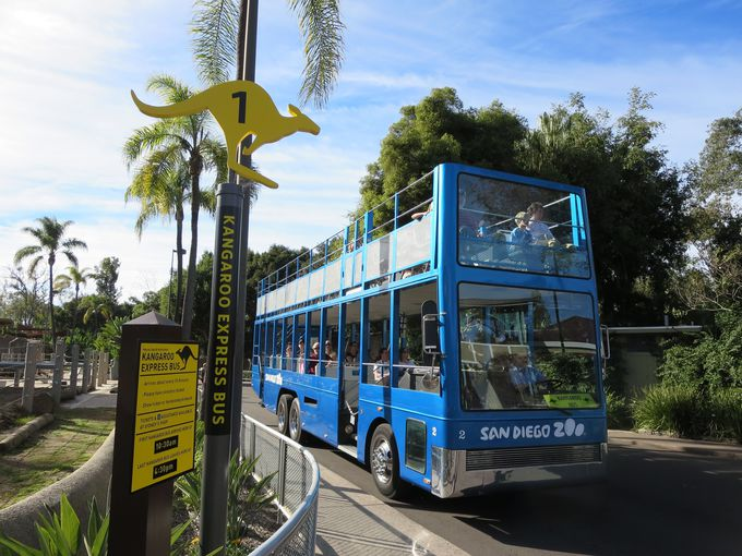 園内周遊はダブルデッキのオープントップバスにお任せ!