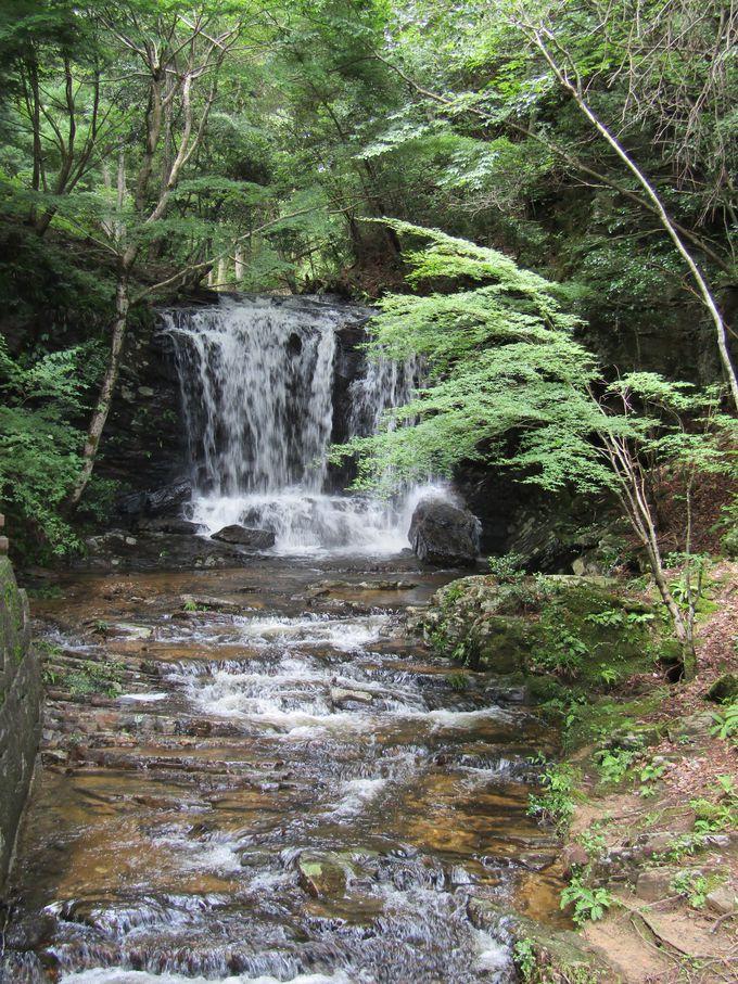 遊歩道を歩いて南端の「たびの尻滝」を目指そう