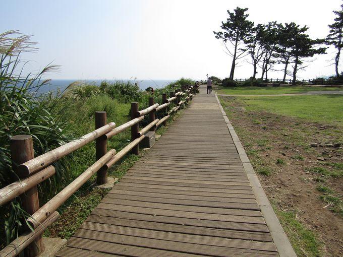 「オルレ」を少しだけ歩いて、済州島の大自然をプチ体感