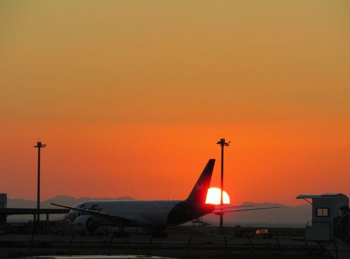 航空機の背景には夕陽がよく似合う「KIXそらぱーく」