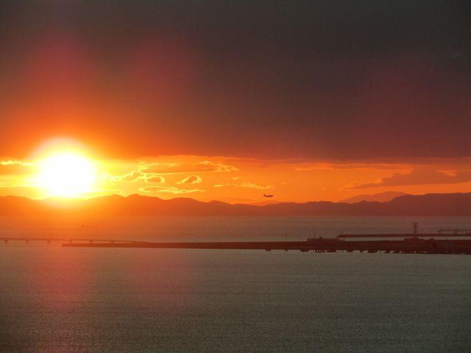 超高層ビル「りんくうゲートタワー」から関西空港島と夕陽を見おろす