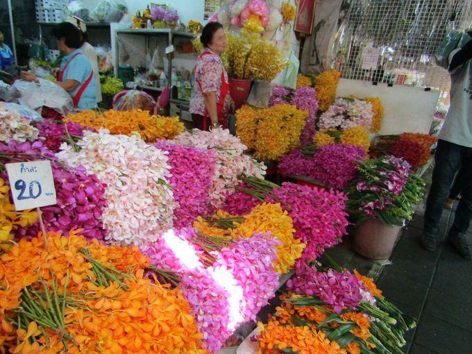 カラフルな南国の花々を鑑賞!パーク・クローン市場