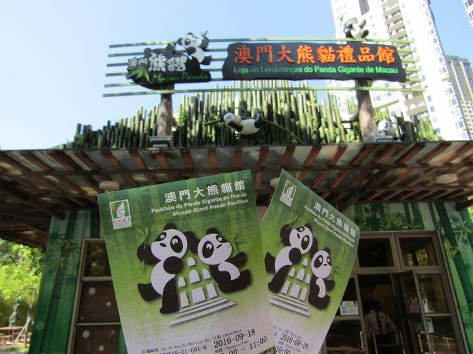 入場予約制で1時間ゆっくりパンダと対面