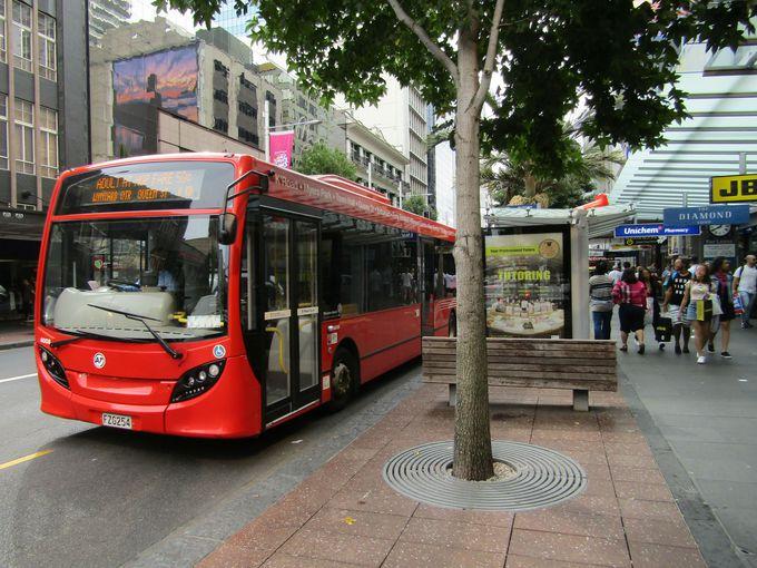 オークランド観光に便利なシティバスは赤色が目印!
