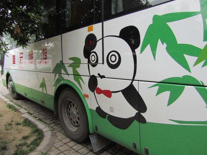 """成都のトレードマーク!だから""""人寄せパンダ""""が目印?"""