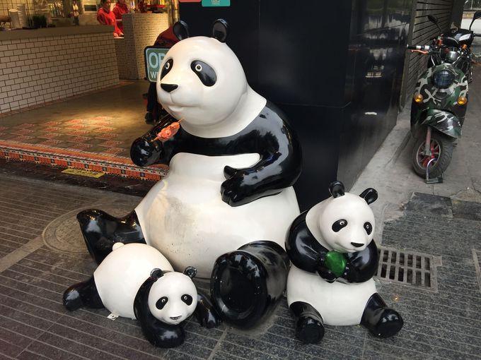 """まだまだ出没!""""人寄せパンダ"""""""