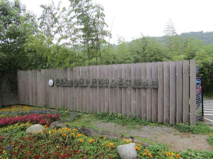 ゆったり施設「中国パンダ保護研究センター都江堰基地(熊猫楽園)」