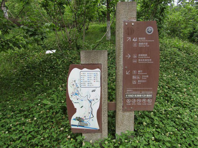 広大な敷地の「中国パンダ保護研究センター都江堰基地」