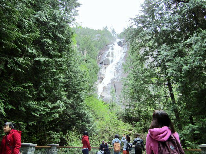 「シー トゥー スカイ ハイウェイ」で山や滝を楽しもう
