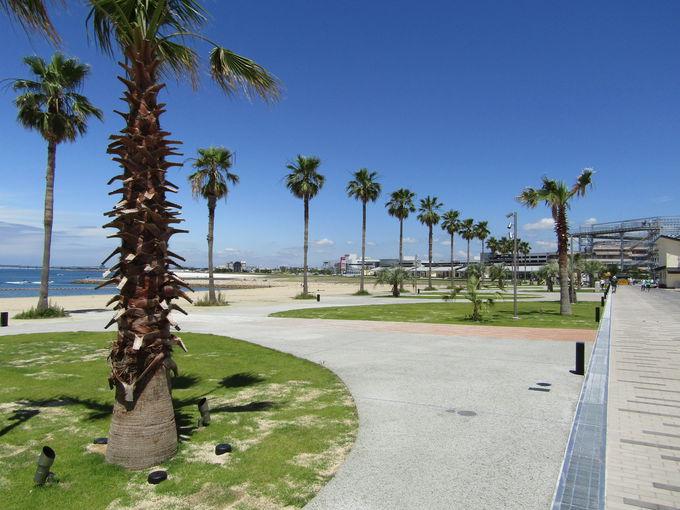 関空の対岸にオープン「泉南りんくう公園」