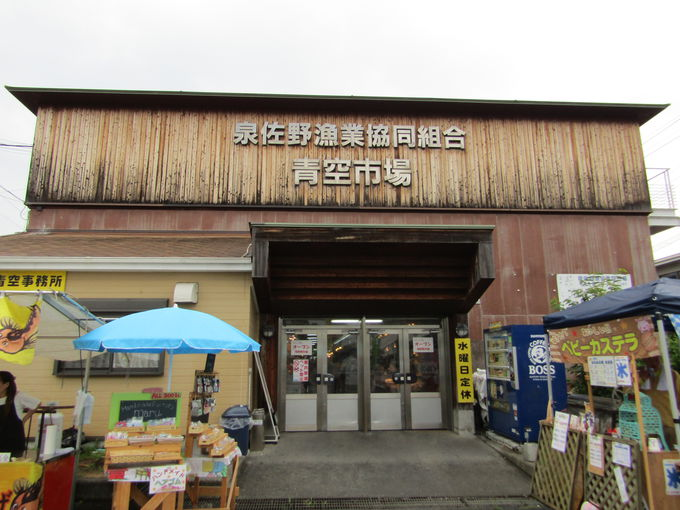 ピチピチの鮮魚が買える!味わえる!「佐野漁港 青空市場」