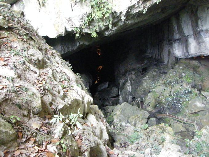 アドベンチャー要素満載のウインド洞窟&クリアウォーター洞窟