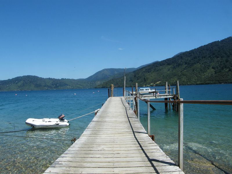 NZの隠れた名所!「マールボロ・サウンズ海洋公園」に行こう