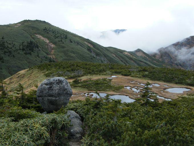 頂上付近の散策スポット「玉子石」